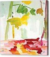 Dunnfield-creek-92013-16x12 Acrylic Print