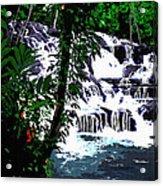 Dunns River Falls Jamaica Acrylic Print