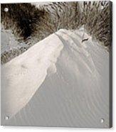 Duotone Dune Acrylic Print