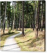Dutch Country Bicycle Path Acrylic Print