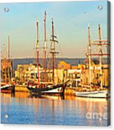 Dutch Tall Ships Docked Acrylic Print by Bill  Robinson