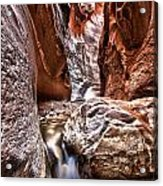 Dwarf Waterfall Acrylic Print