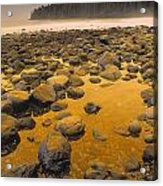 D.wiggett Rocks On Beach, China Beach Acrylic Print by First Light