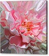 Dynamic Florals #21 Acrylic Print