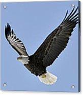 Eagle Class Acrylic Print by RJ Martens