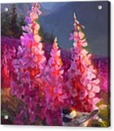Eagle River Summer Chickadee And Fireweed Alaskan Landscape Acrylic Print