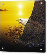 Eagle Sunset Acrylic Print