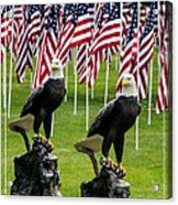 Eagles And Flags On Memorial Day Acrylic Print