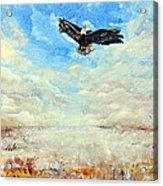 Eagles Unite Acrylic Print