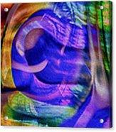 Ear To The Stars Acrylic Print