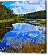Early Autumn At Fly Pond - Old Forge Ny Acrylic Print by David Patterson