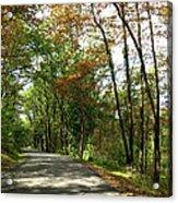 Early Autumn Drive Acrylic Print