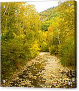Early Autumn On Seneca Creek Wv Acrylic Print