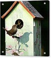 Early Bird Gets The Worm Acrylic Print