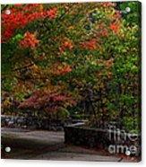 Early Fall At Talimena Park Acrylic Print