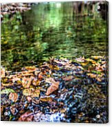 Early Fall Number Two Acrylic Print
