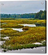 Early Fall On The Moose River - Old Forge New York Acrylic Print by David Patterson