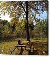 Early Fall Acrylic Print