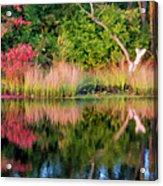 Early Fall Reflection Acrylic Print