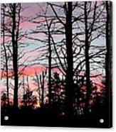 Early Fall Sky Vi Acrylic Print