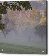 Early Morning Country Acrylic Print