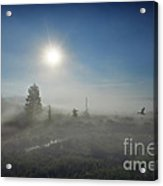 Early Morning Fog At Canaan Valley Acrylic Print