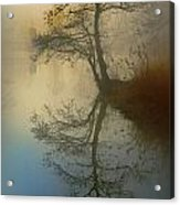 Early Morning Acrylic Print by manhART
