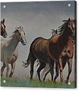 Early Morning Run Acrylic Print