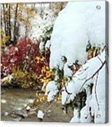 Early Snow Acrylic Print