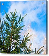 Early Spring - Featured 2 Acrylic Print