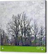 Early Spring Landscape  Digital Paint Acrylic Print