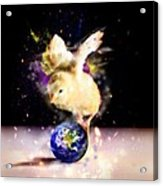 Earth Chick Acrylic Print
