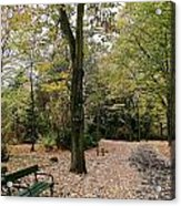 Earth Day Special - Bench In The Park Acrylic Print