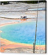 Earth Rainbow - Overhead View Of Grand Prismatic Spring In Yellowstone National Park.  Acrylic Print