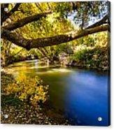 East Canyon Creek Acrylic Print
