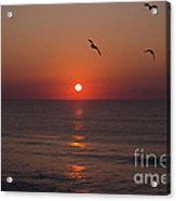 East Coast Sunrise Acrylic Print