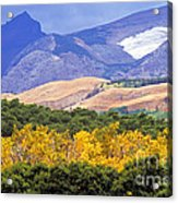 East Glacier Fall Acrylic Print