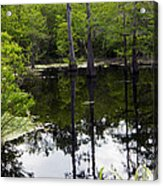 East Texas Cyprus Pond Acrylic Print
