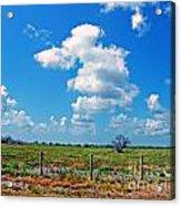 East Texas View Acrylic Print