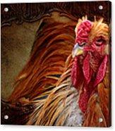 Easter Cock Acrylic Print