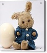 Easter Egg And Bunny Acrylic Print