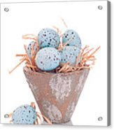 Easter Egg On Straw Acrylic Print