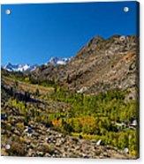 Eastern Sierras 11 Acrylic Print