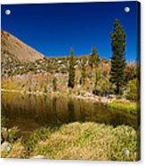 Eastern Sierras 18 Acrylic Print
