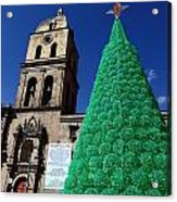 Ecological Christmas Tree Acrylic Print