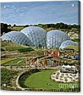 Eden Project 2002 Acrylic Print by David Davies
