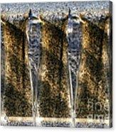 Edge Of A Fountain Acrylic Print