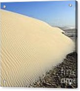 Edge Of The Dune Brazil Acrylic Print