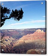 Edge Of Wonderment Acrylic Print by Janice Sakry