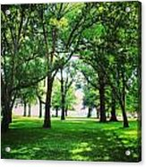 Edgewater Park Forest Acrylic Print